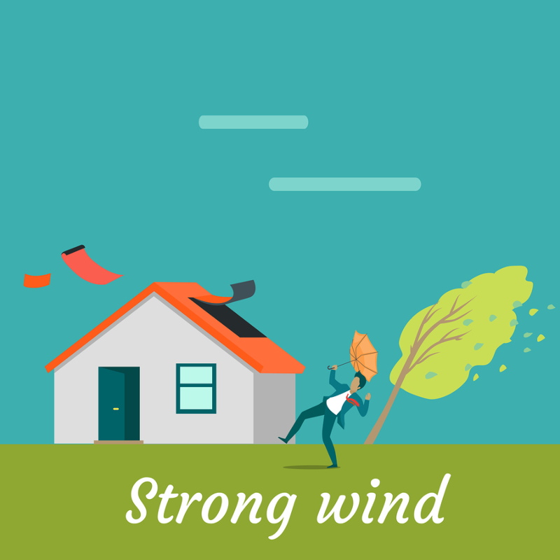 How To Spot Roof Damage From Wind 2019 Guide Stormpros